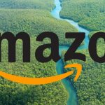 Amazon Grabs for .Amazon Domain over Objections of Amazon River Countries