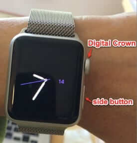 apple watch buttons
