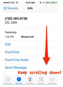 block callers info iphone page 1