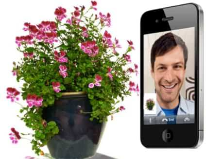 Facetime with Your Plants! (And Water Them from Anywhere)