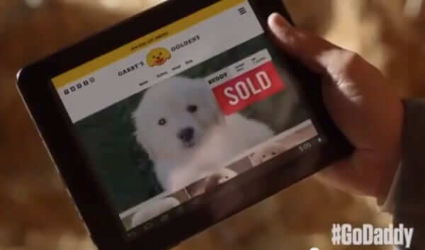 godaddy lost puppy sold