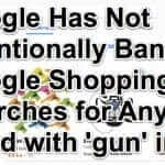 "Reports of Google Shopping not Allowing Searches Containing the Term ""Gun"" Greatly Exaggerated"
