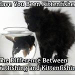 Have You Been Kittenfished? The Difference Between Catfishing and Kittenfishing