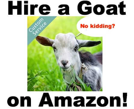 Hire a Goat on Amazon!