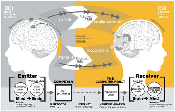 Scientists Prove Digital Brain to Brain Thought Communication Over the Internet
