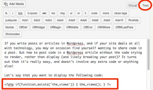 how to wordpress code in text editor