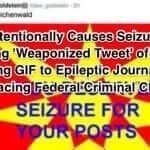 "Hater Intentionally Causes Seizure in Epileptic Reporter with ""Weaponized Tweet""; Faces Federal Charges"